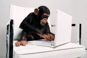 Chimpanzee with laptop.